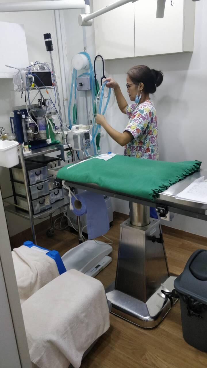 Оборудование клиники в Сингапуре
