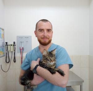 ветеринарный офтальмолог Сумы