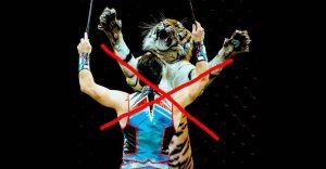 запрет цирков с животными